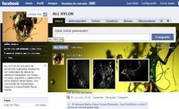 miceli en facebook