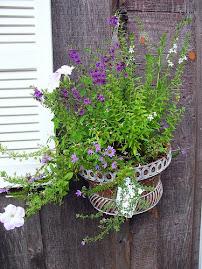 A Pretty Pot