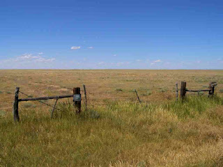 [Shortgrass prairie at Steel's Fork ranch]