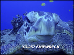 YO-257 Shipwreck Diving