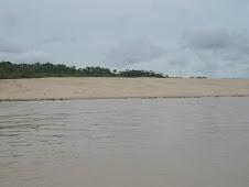 Praia do Rio Juruá