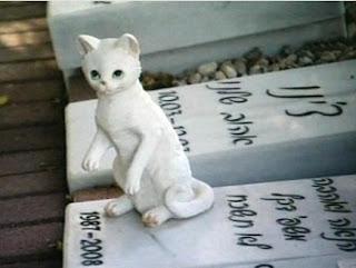מצבה מיוחדת בבית קברות לחיות