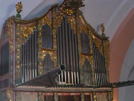 Órgano Histórico