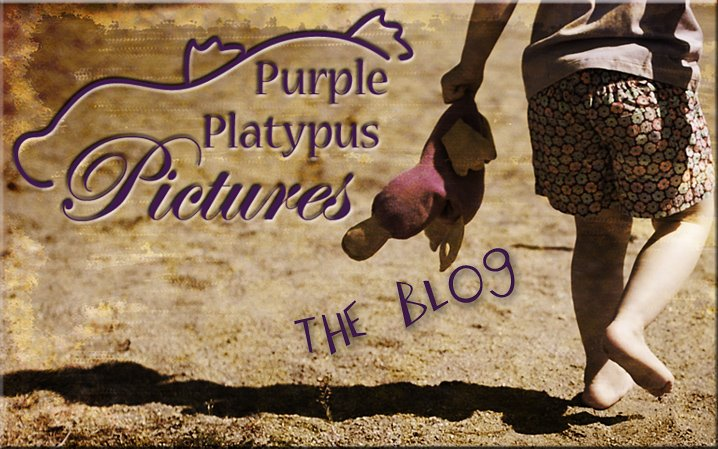 Purple Platypus Pictures: Family, Senior, Children Photographer in Columbus Ohio
