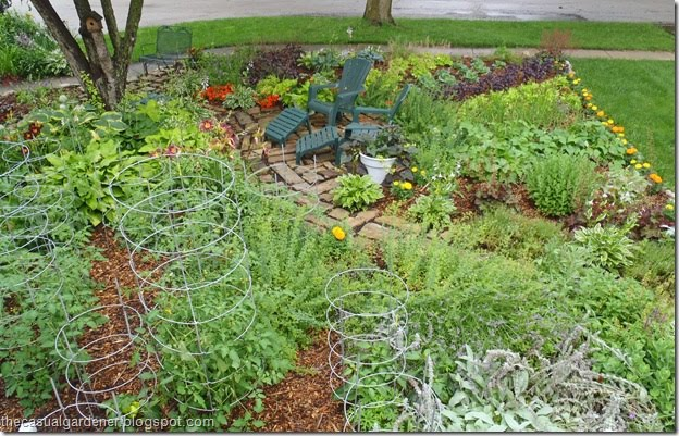 Blog Recommendation Monday The Casual Gardener UC Davis