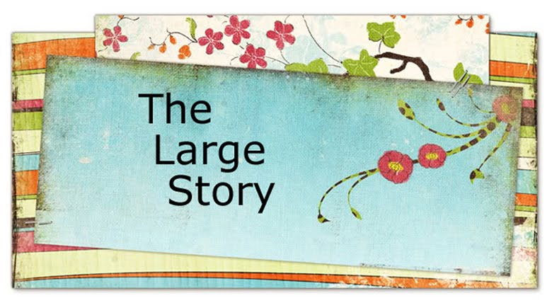 The Large Story