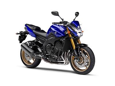 2010 Yamaha FZ8 Picture