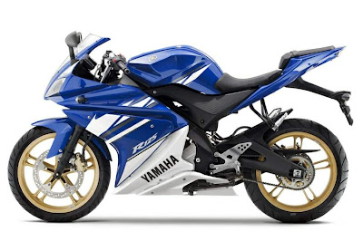 2010 Yamaha YZF-R 125 Photo
