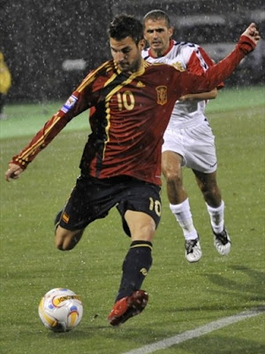 Cesc Fabregas World Cup 2010 Photos