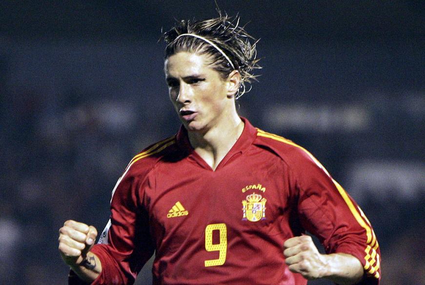 Fernando Torres World Cup 2010 Photo