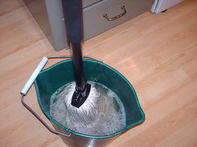 picture of a pail with water and mop