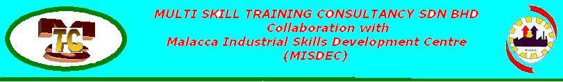 MULTI SKILLS TRAINING CONSULTANCY SDN BHD (587419-K)