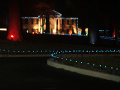 GRACELAND IS ALL IN LIGHTS