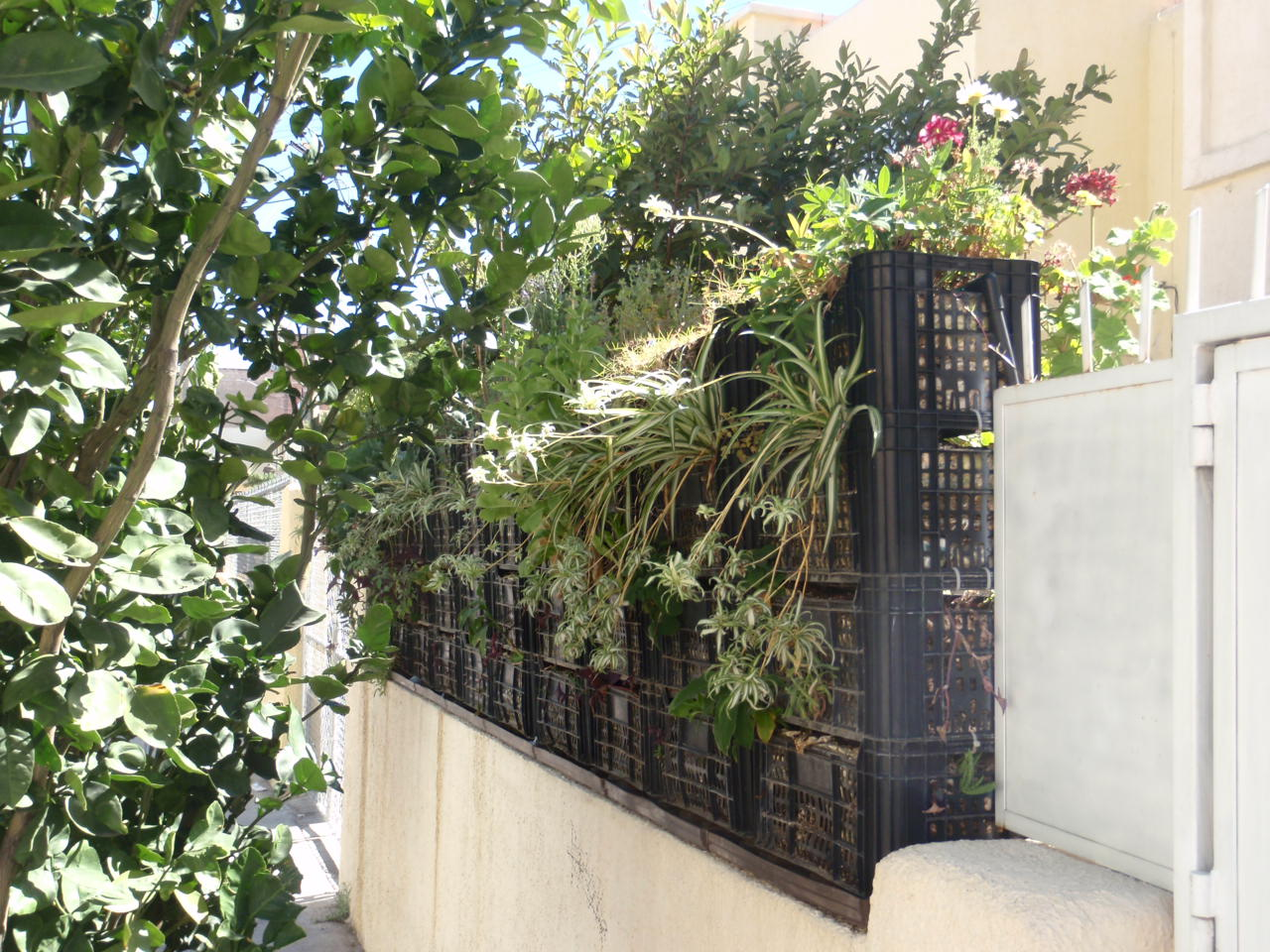 PeoplesPropertyRevolution Recycled Vertical Garden