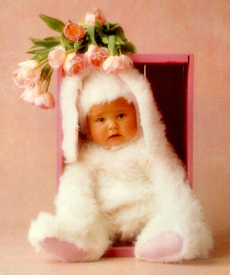 Funny Baby Pictures Facebook lol pictures