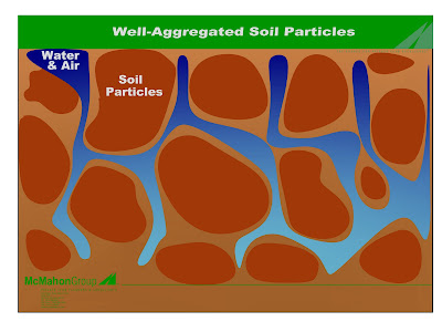 Well aggregated soil particles improve plant growth by allowing for better oxygenation, greater nitrogen fixation, and improved access to nutrients.
