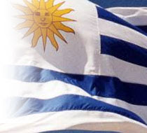 Mi bandera!