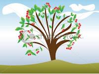 Okul öncesi Etkinlik Dünyası Kiraz Ağacı Hikaye