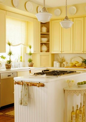 Barrie Briggs Spang: Oh, Kitchen Cabinets, What to do?