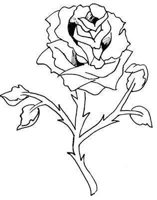 risco de flor rosa diversos desenhos de flor para colorir