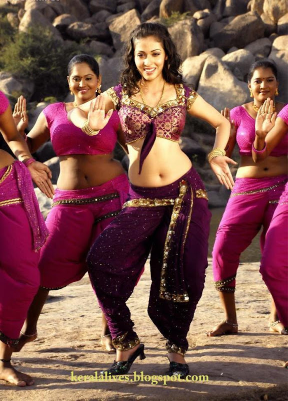 South Indian Sexy Sadha Showing Chubby Navel Amazing Photoshoot gallery pictures
