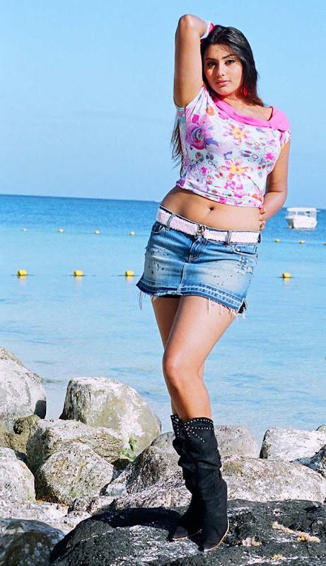 South Hot Namitha Latest Body Sjhow Sexy Still Photos hot images