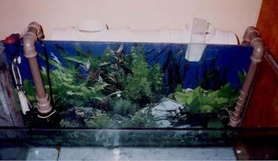Filtro canister Caseiro para aquário passo a passo. Filtrotinspecao7