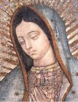Virgen de Guadalupe, defensora de la vida