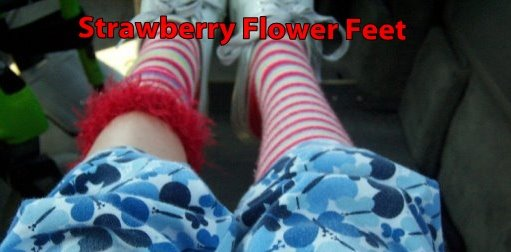 Strawberry Flower Feet