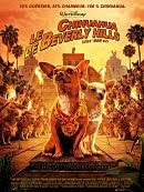 Le-chihuahua-de-Beverly-Hills