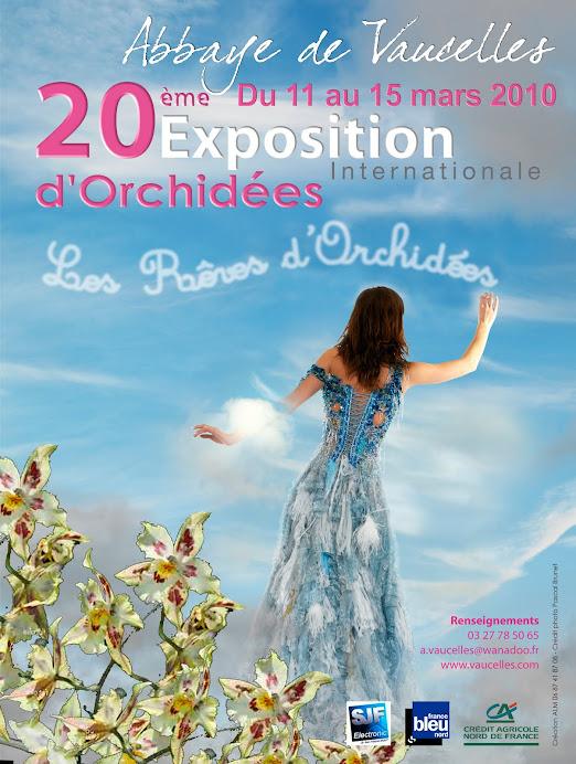 Rêves d'Orchidées