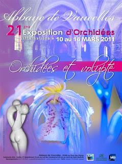 21ème exposition  internationale de Vaucelles (2011) Affiche%2Bvaucelles%2B2011