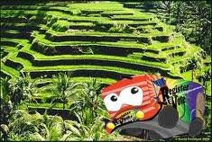 Banaue Rice Terraces, in Ifugao