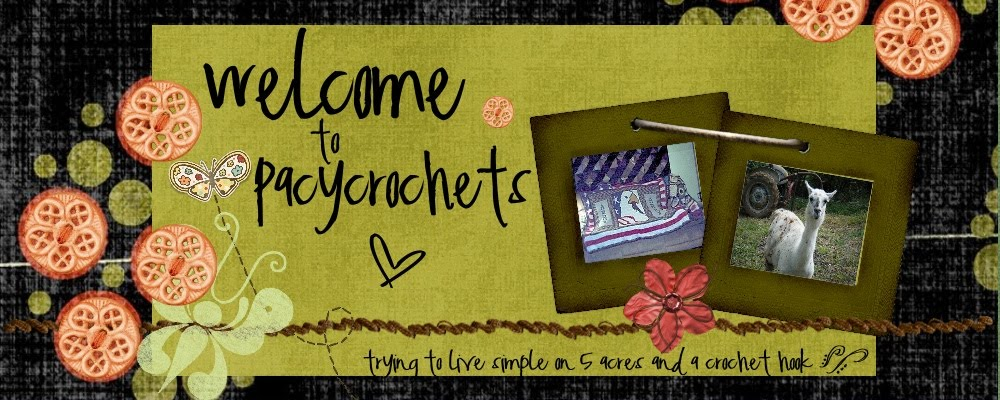 Pacy Crochets