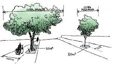 Manual Técnico de Arborização