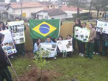 Curitiba PR