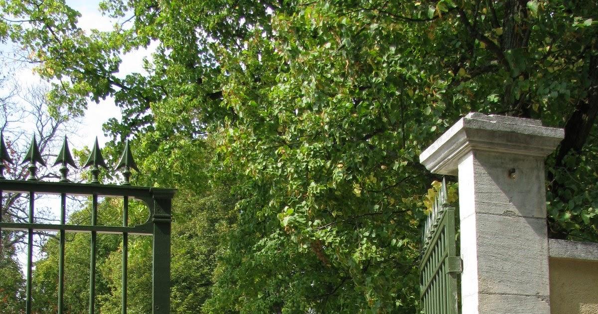 Le jardin de v rone la rose sophie davant for Le jardin japonais sophie walker