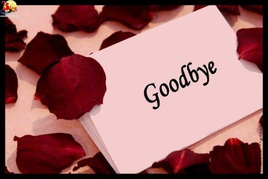 احبائى اعزائى لن اغيب طويلا... 20766463_images1490726_Goodbye_by_ExquisiteDistraction