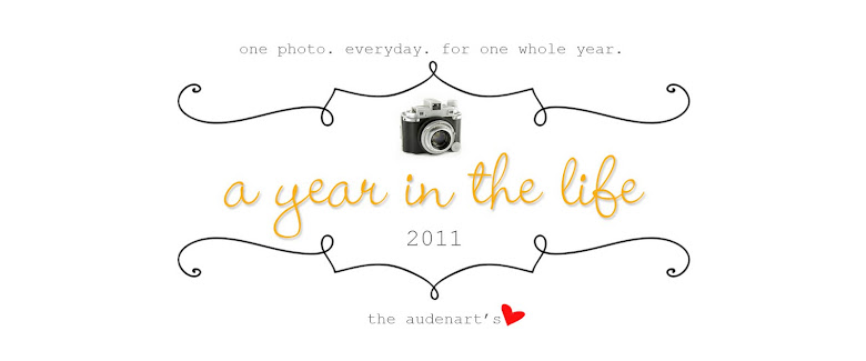 audenart family a year in the life '11