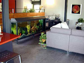Beautiful Aquarium Furniture tank