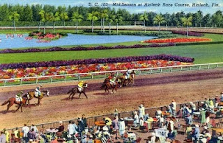 postcard of horse race at Hialeah race track in Florida