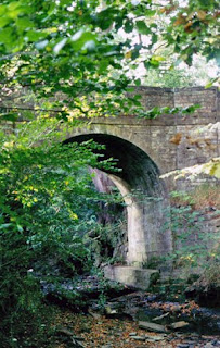 old gray stone bridge seen through trees and brush