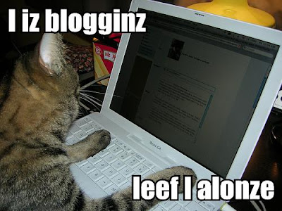 photo of Lolcat blogging