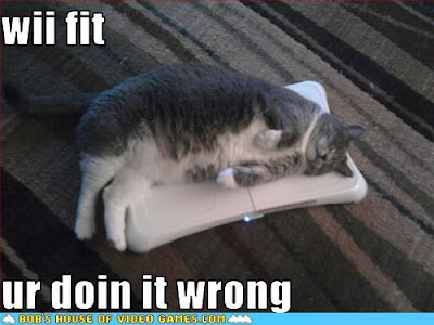 fat cat sleeping on Wii with caption your doing it wrong