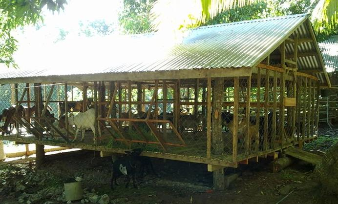 The new house for our goats, constructed of materials already in the ...