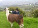 Ruralidad ecuatoriana