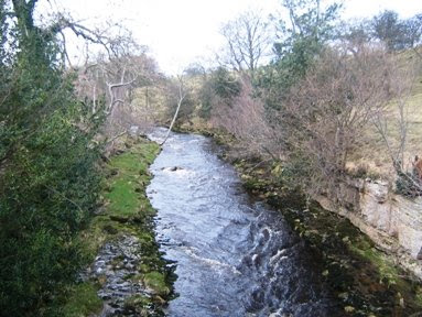 River Cover at Hullo Bridge