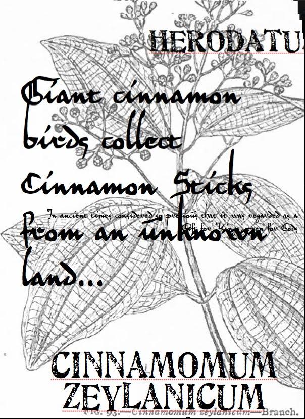 [cinnamon+screen+1.JPG+]