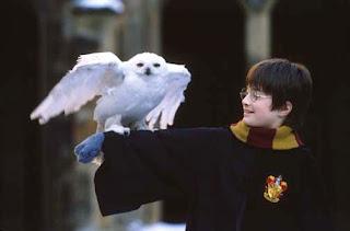 Escritora pode escrever novo livro de 'Harry Potter'