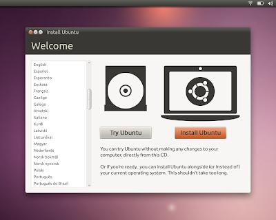 Ubuntu 10.10 Installer